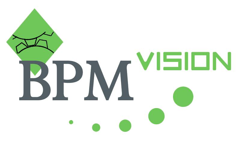 BPM Vision