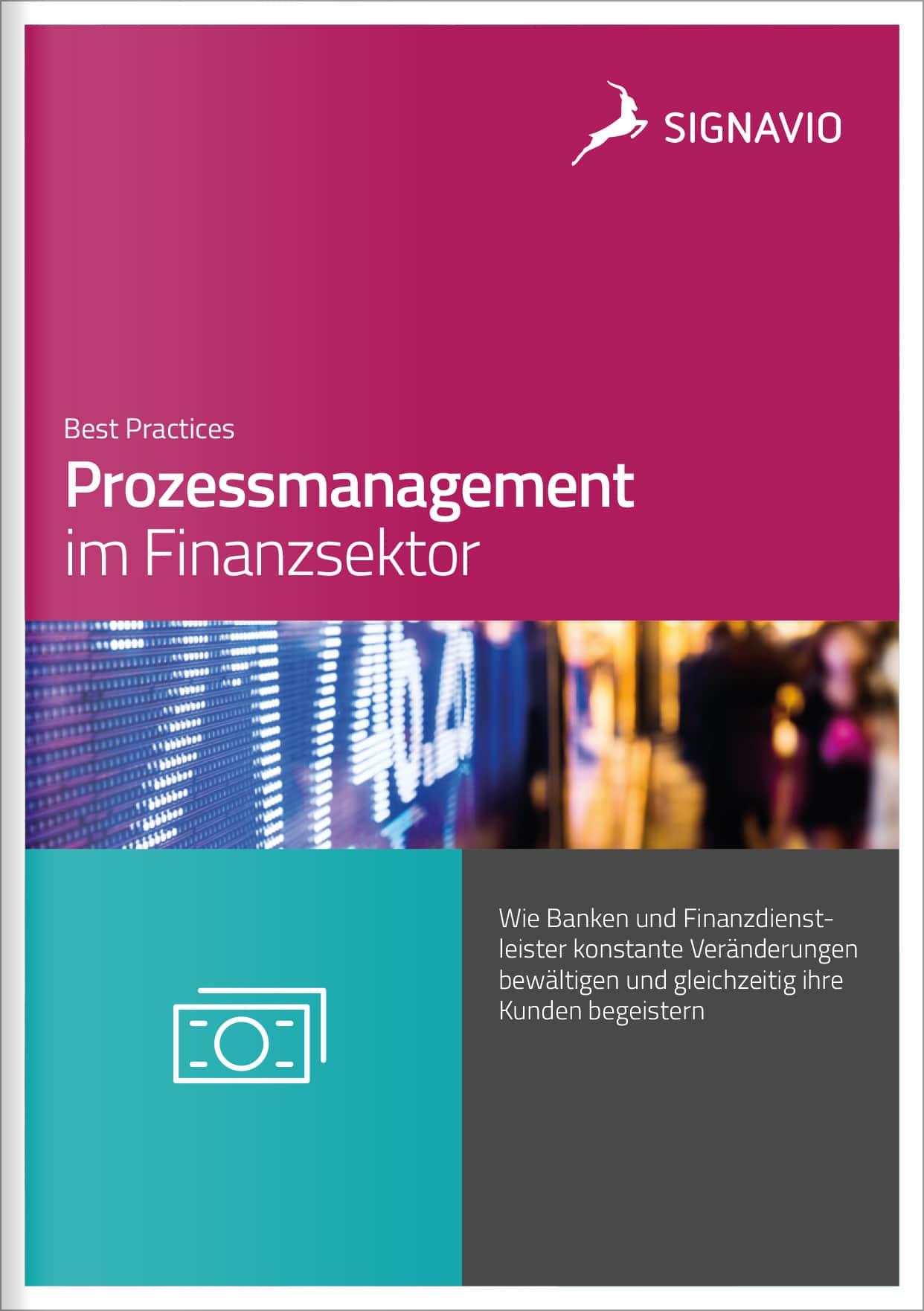 Prozessmanagement im Finanzsektor Preview-Bild