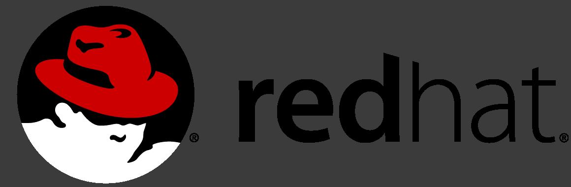 Red Hat OEM Partner Logo