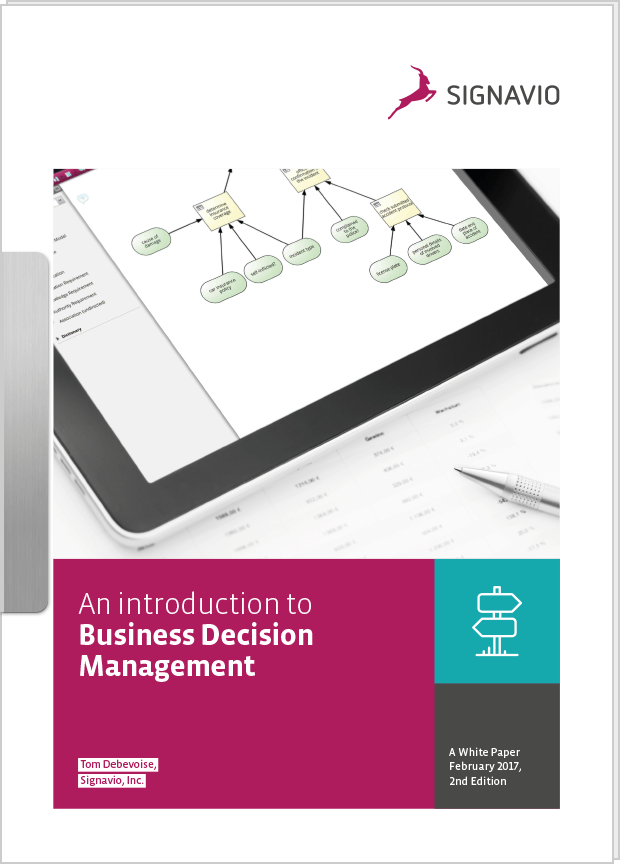 Introduction to business decision management preview