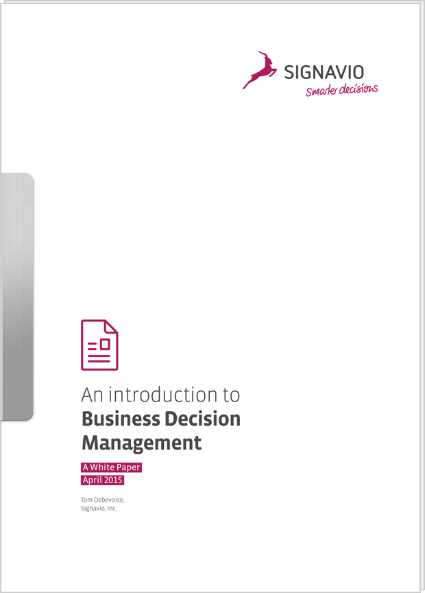 Cover preview: White Paper: An Introduction to Business Decision Management