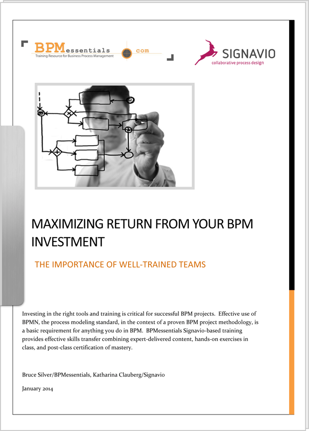 Cover preview: White Paper Maximizing BPM Investment