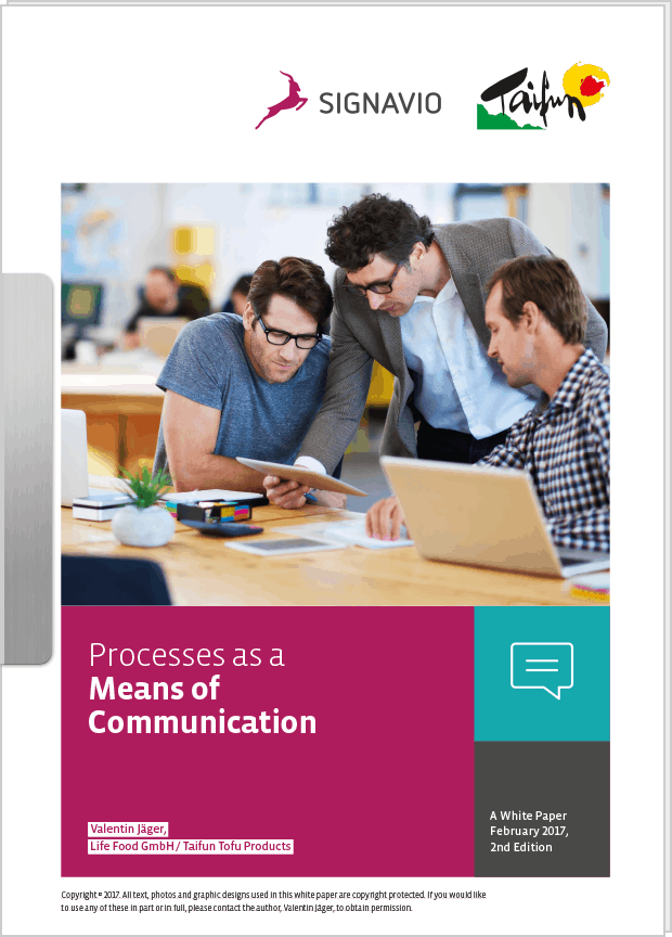 White Paper Processes as a Means of Communication preview