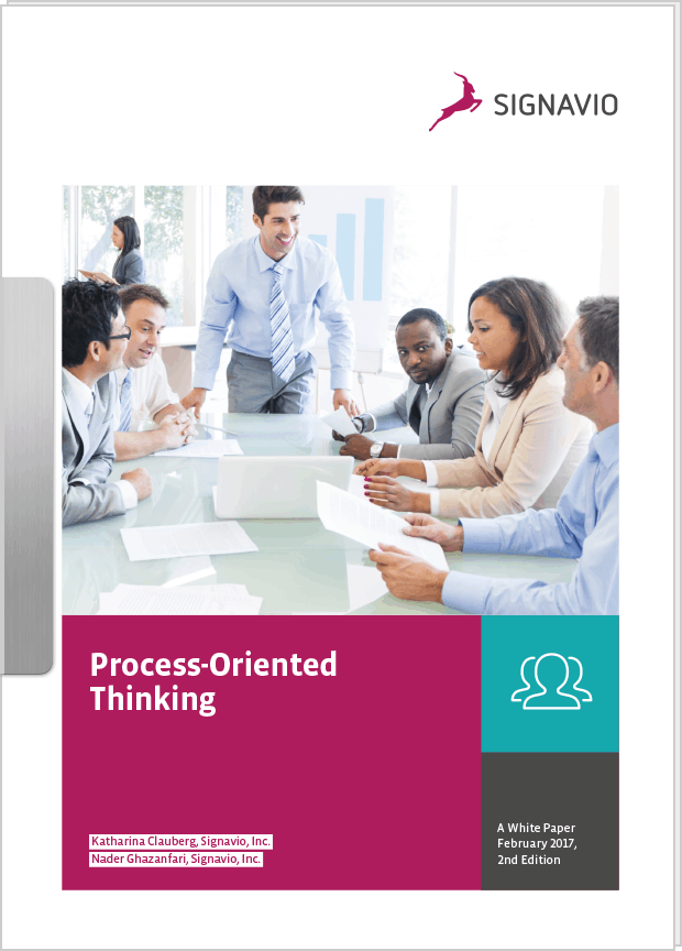 White Paper Process-Oriented Thinking preview