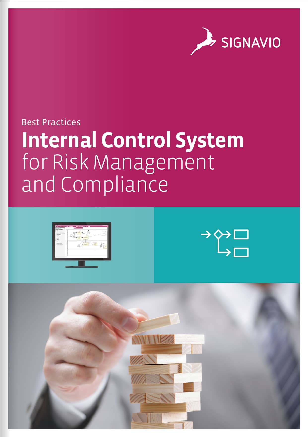 internal-control-system-cover