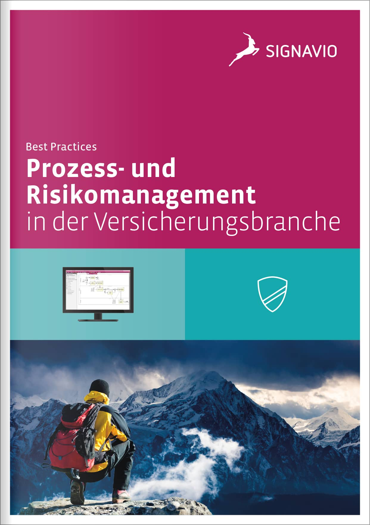 Prozess- Risikomanagement in der Versicherungsbranche