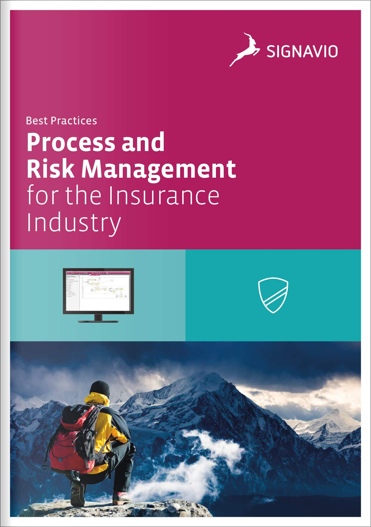 process-and-risk-management-for-the-insurance-industry-cover