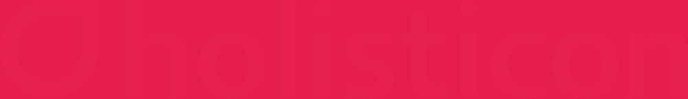 Holisticon Consulting Partner Logo