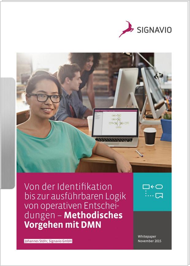 """Vorschaubild: Whitepaper """"Methodisches Vorgehen mit DMN"""""""