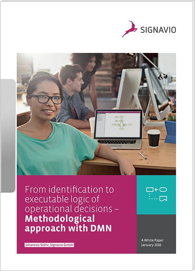 Cover preview: White Paper Methodological approach with DMN