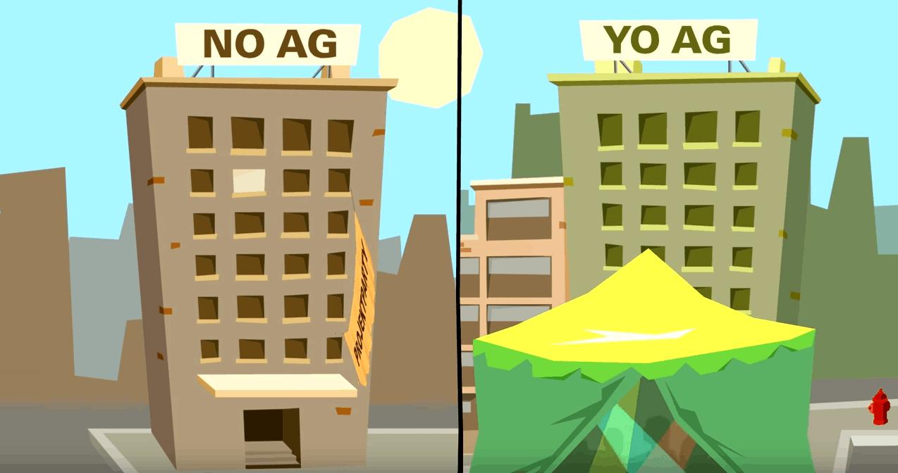 YO AG vs. NO-AG: So sichern Sie Ihre Steuer-Compliance