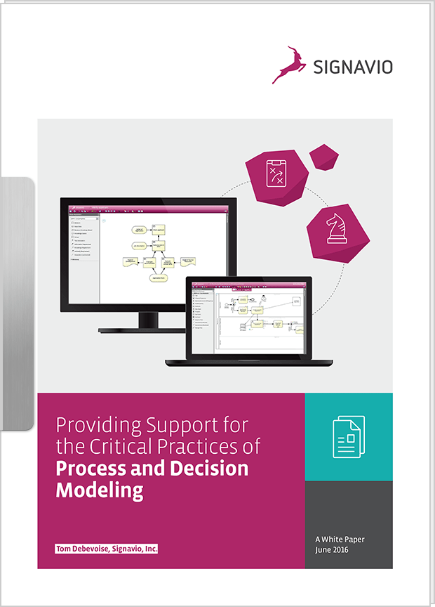 Whitepaper - Providing Support for the Critical Practices of Process and Decision Modeling