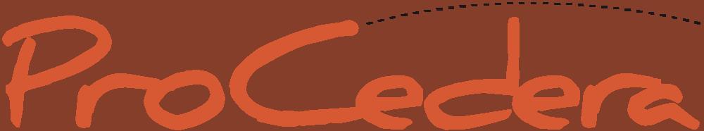 Procedera Logo