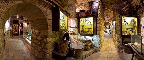 Musée du Vin panoramique