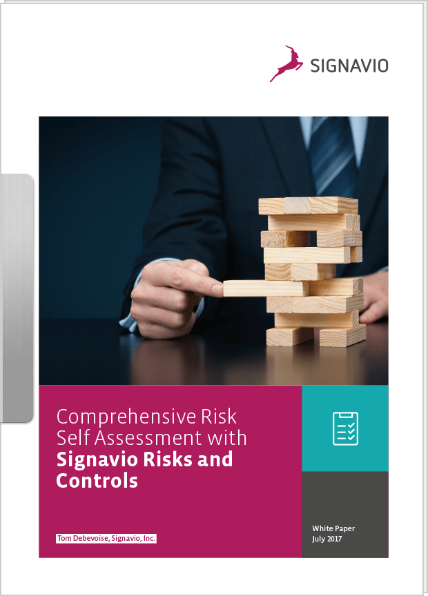Risk management with Signavio