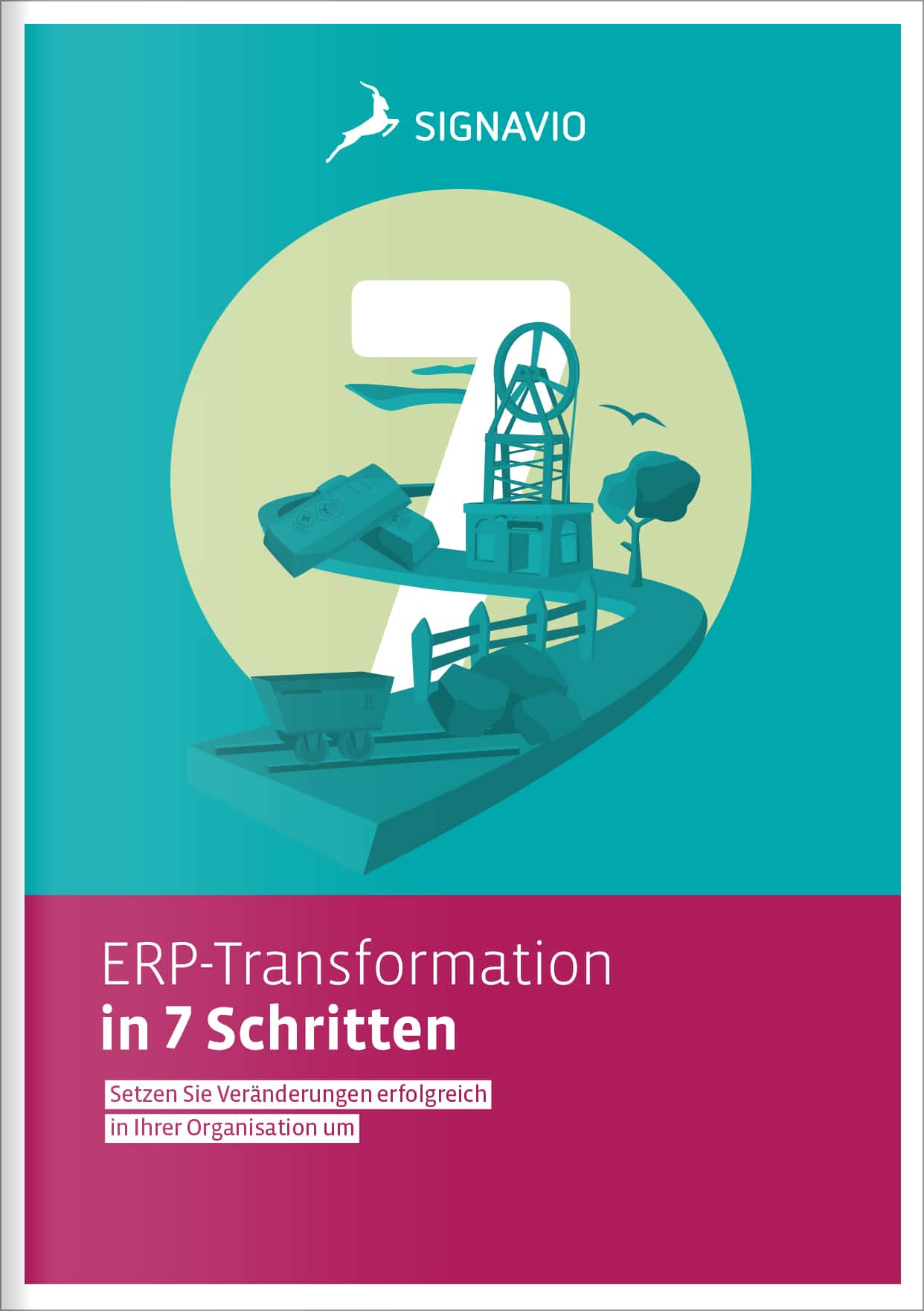ERP-Transformation in 7 Schritten (de)