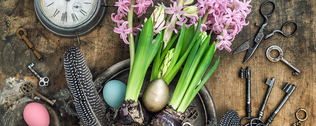 Process optimization - Easter eggs and daffodils