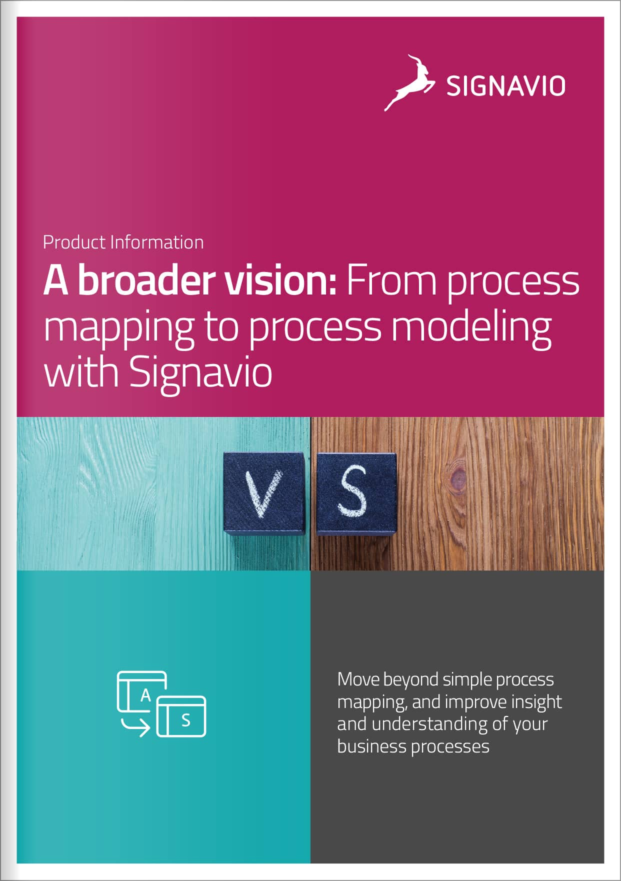 Process-mapping-to-process-modeling-front-cover