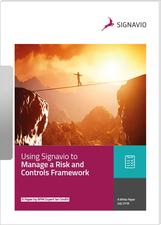 risk and control framework white paper cover