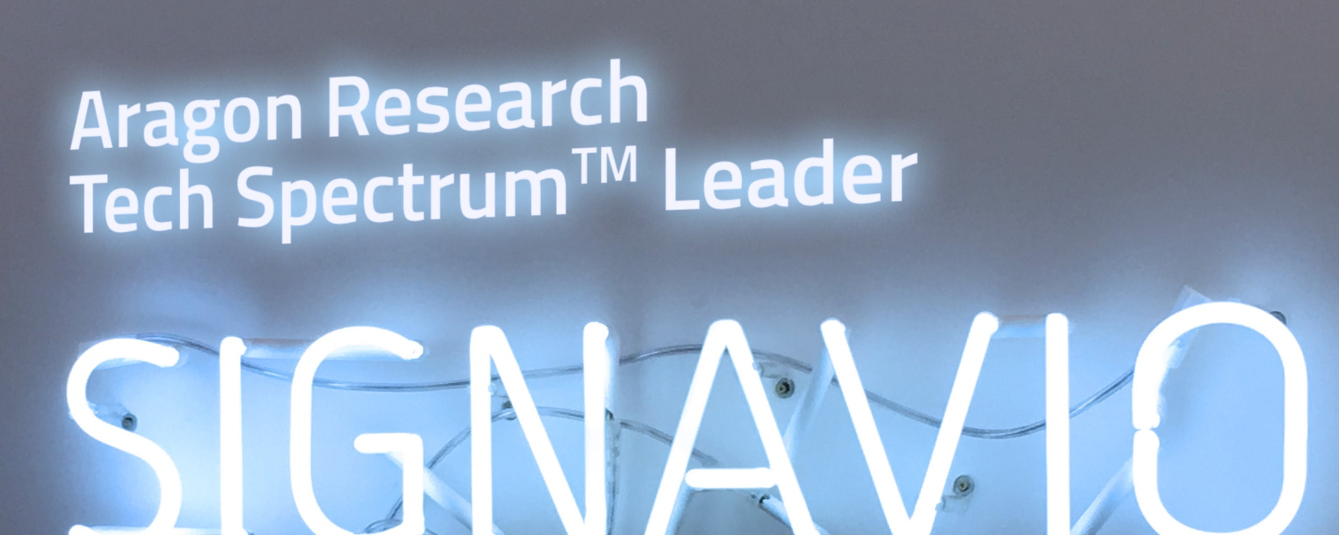 Tech Spectrum™ Leader 2019 sign