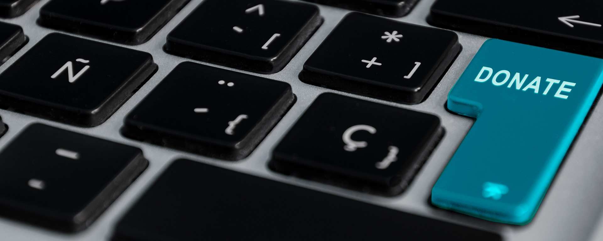 Next step in sustainability blog image - Laptop with donate button