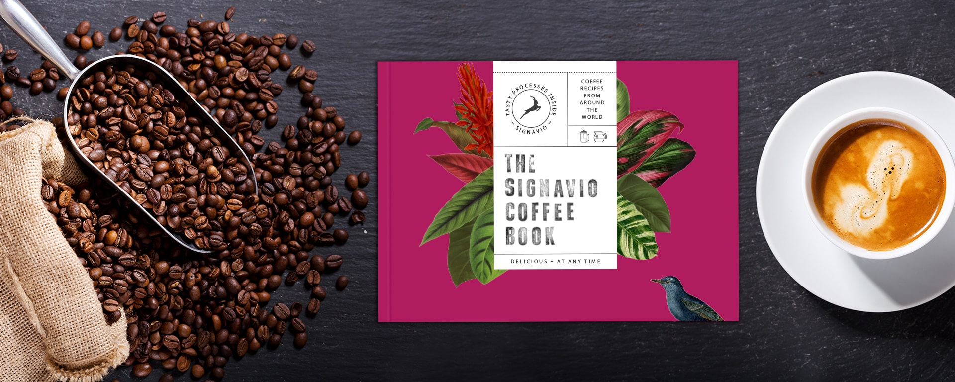 Signavio BPM Coffee Book